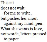 [The cat does not wait for me to write]